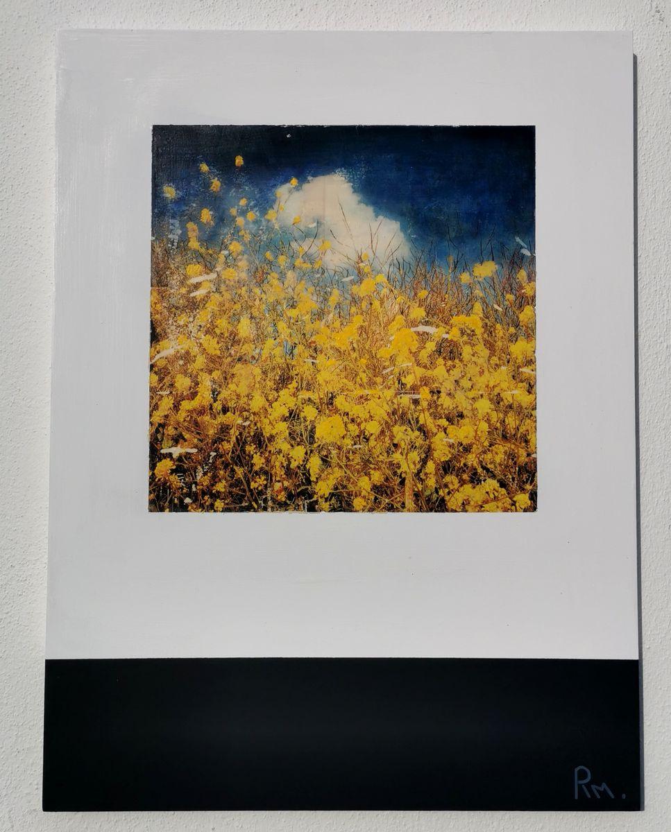 Bleu jaune /tech mixte sur bois 80x60cm