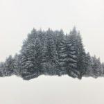 Cohabitation /acryl et pastel 50x50cm