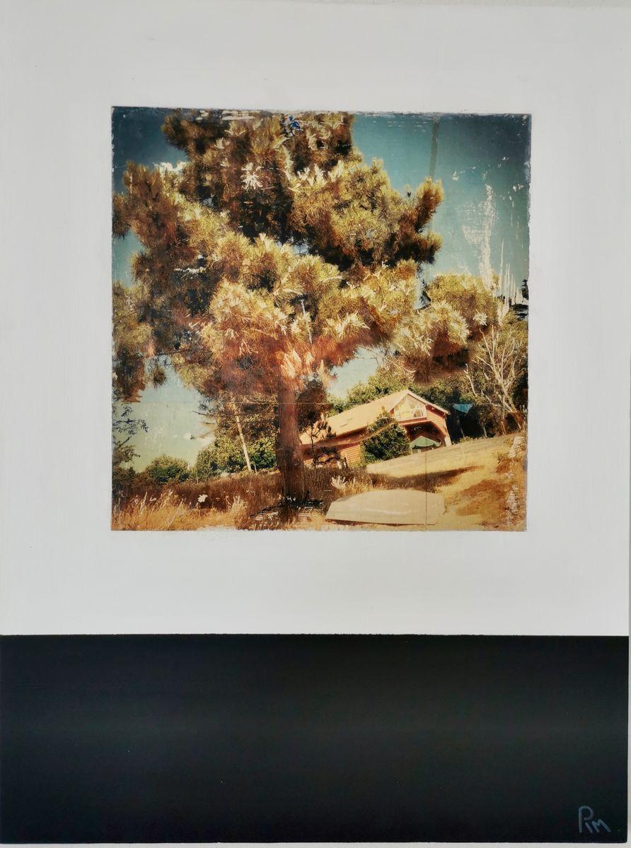 Canicule /photographie et technique mixte sur bois 80x60cm
