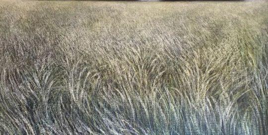 Herbes folles /pastel sec sur papier 100x100cm encadré sous verre