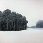 Janvier /acrylique et pastel sur papier 40x40cm hors cadre VENDU
