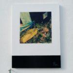 La cabane /tech mixte (photo, acryl, pigments..) sur bois /80x60cm