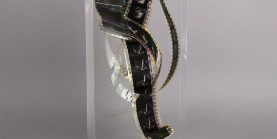 Pellicule Attrape rêve et Biches en forêt /cristal de synthèse 30x10x10cm