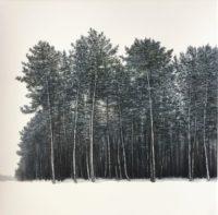Sonate /pastel sec sur papier 71x71cm encadré sous verre