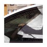 Habitants sur route 3/photographie dépigmentée/PU/60x60cm encadrée