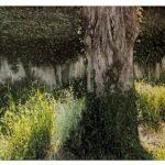 Paysage sur route Franche Comté /photographie dépigmentée /Pièce unique/69,5x85,5cm encadrée