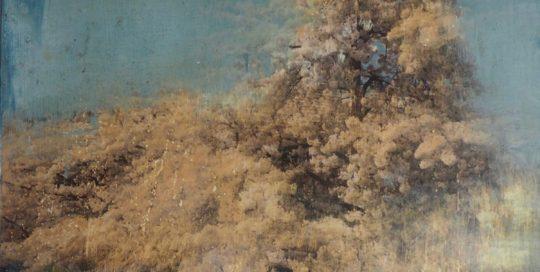Rêve éveillé /photo argentique, encre et pigments 50x50cm