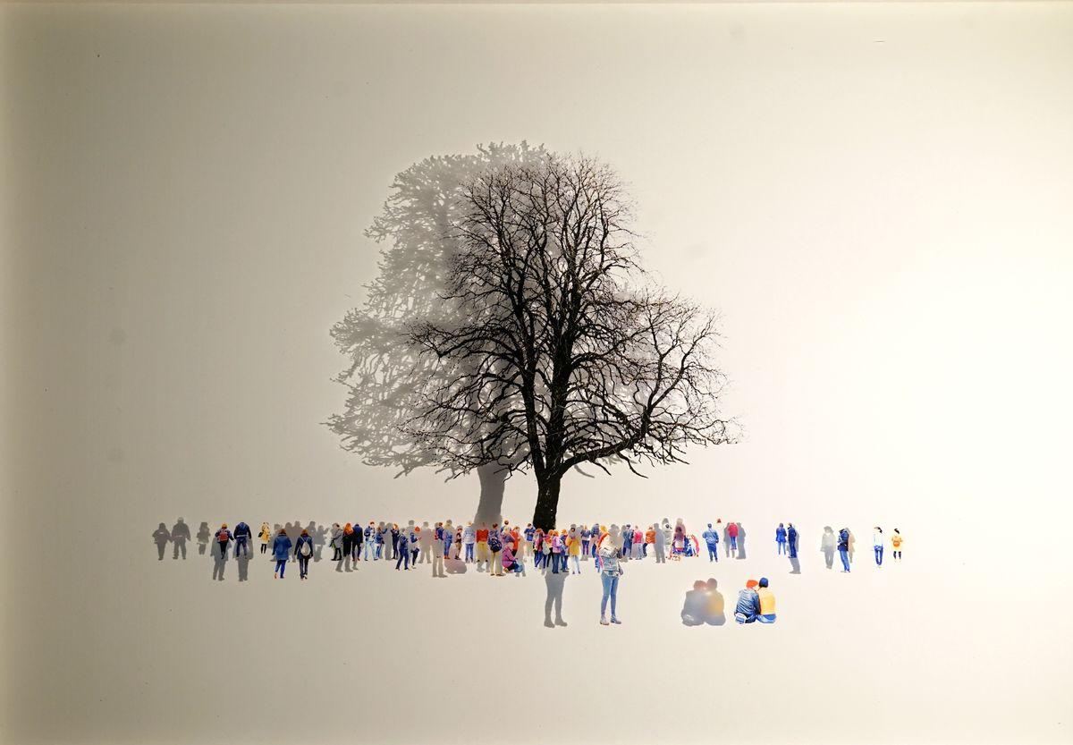 The last tree /30x45cm