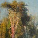 Une parenthèse /photo argentique, encre et pigments 30x20cm